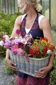 Vrouw met mand zomerbloemen
