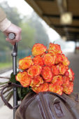Roses on bagage trolley