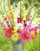 Dahlia en gladiolus mix