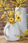 Gerbera and Ilex bouquet