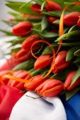 Liberation day celebration Netherlands