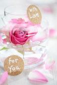 Valentijnsroos
