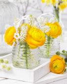 Voorjaarsbloemen combinatie