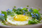 Fried egg with Blue Ocean flowers