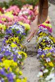 Lady gardening