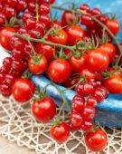 Solanum lycopersicum Tutti Frutti™ F1 Red Berry