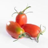 Solanum lycopersicum, pomodori tomaat