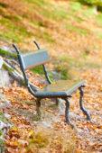 Garden bench in autumn forest
