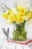 Narcissus bouquet