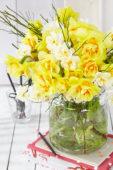 Narcissus boeket