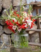 Gladiolus bouquet