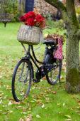 Bloemen in fietsmand