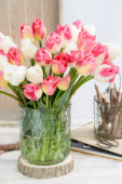 Tulipa boeket