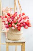 Tulipa Pride bouquet