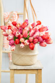 Tulipa Pride boeket
