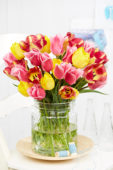 Tulipa bouquet