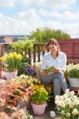 Daffodils on roof terrace