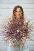 Young lady with Allium schubertii
