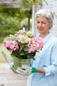Lady holding hydrangea