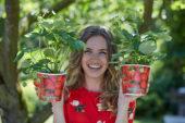 Lady holding straberry plants