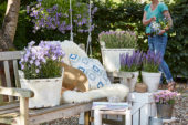 Zomer containers