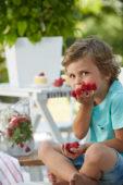 Rubus idaeus BonBonBerry® Yummy