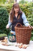 Young lady planting a bulbous lasagne