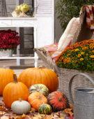 Pompoenen herfst scene