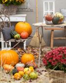 Pompoenen herfst scène