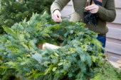 Make your own christmas wreath