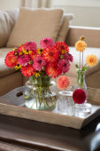 Dahlia bouquet
