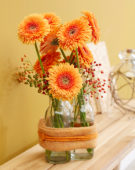 Gerberas in vases