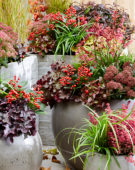 Herfst containers