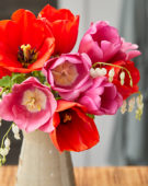 Tulpenmix op vaas