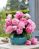 Paeonia roze fluffy boeket