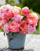 Paeonia pastel bouquet