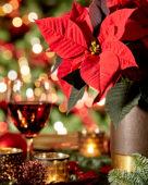 Christmas ambiance