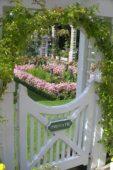 Garden gate, view to summer garden