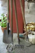 Gardening tools, ball of garden twine and basket of potatoes