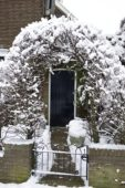 Besneeuwde tuin ingang