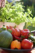 Mixed summer vegetables