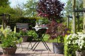 Spring terrace in garden