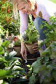 Planting eco pots