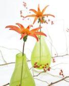 Dahlia Honka Orange