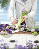 Arranging hyacinths