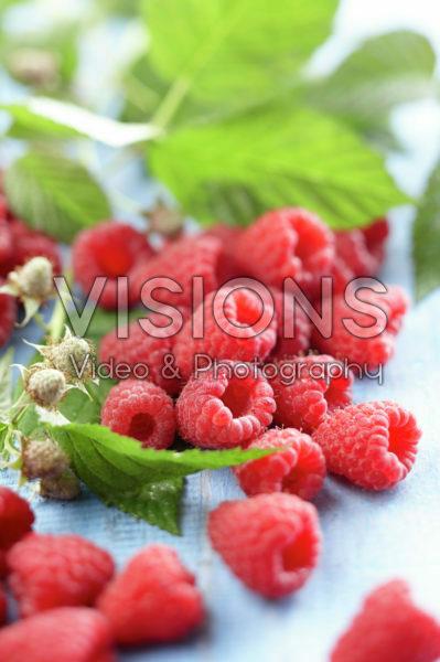 Rubus idaeus Autumn Bliss