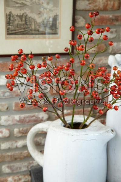 Rose hips in vase
