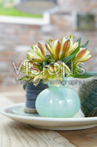 Alstroemeria in vase