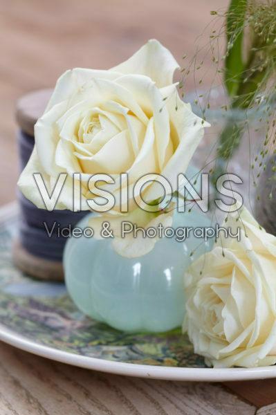 Rosa Avalanche in vase