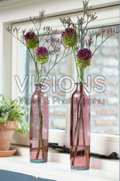 Allium and Statice flowers in vases